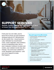Data sheet: NetSuite Support Services